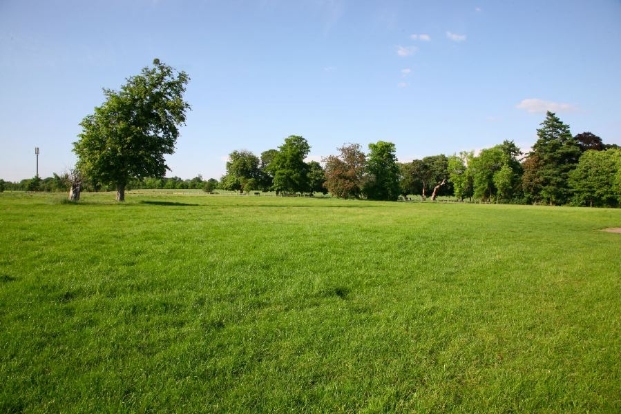 A flat field suitable for events and normally used as an overflow car park
